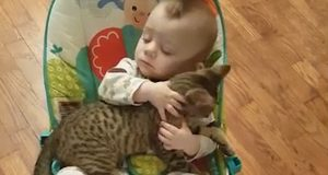 Baby won't let go of his kitten best friend