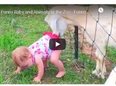 Funny Baby at the Zoo!!!